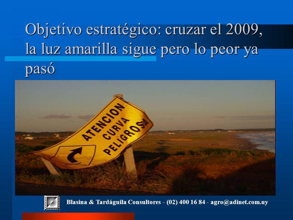 Blasina & Tardáguila Consultores - (02) 400 16 84 - agro@adinet.com.uy Objetivo estratégico: cruzar el 2009, la luz amarilla sigue pero lo peor ya pasó