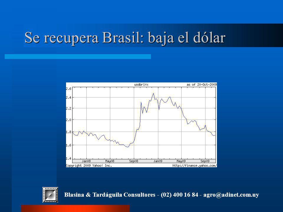 Blasina & Tardáguila Consultores - (02) 400 16 84 - agro@adinet.com.uy Se recupera Brasil: baja el dólar