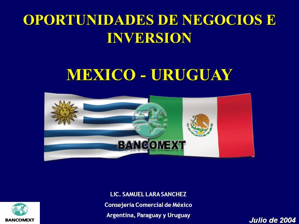 OPORTUNIDADES DE NEGOCIOS E INVERSION MEXICO - URUGUAY Julio de 2004 LIC. SAMUEL LARA SANCHEZ Consejería Comercial de México Argentina, Paraguay y Uru