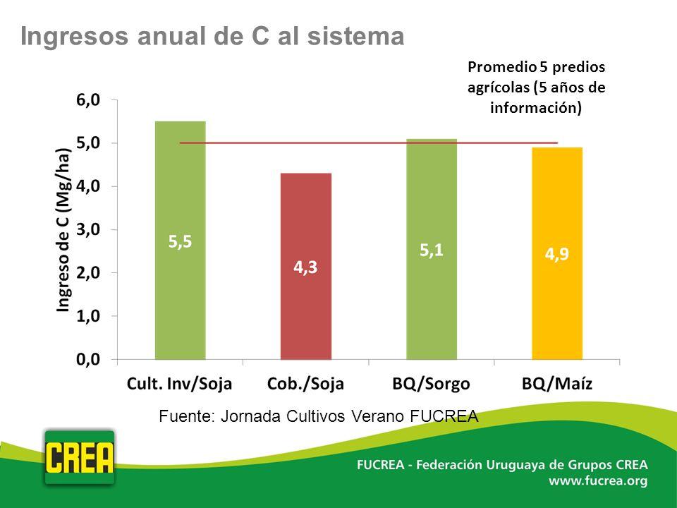 Ingresos anual de C al sistema Promedio 5 predios agrícolas (5 años de información) Fuente: Jornada Cultivos Verano FUCREA