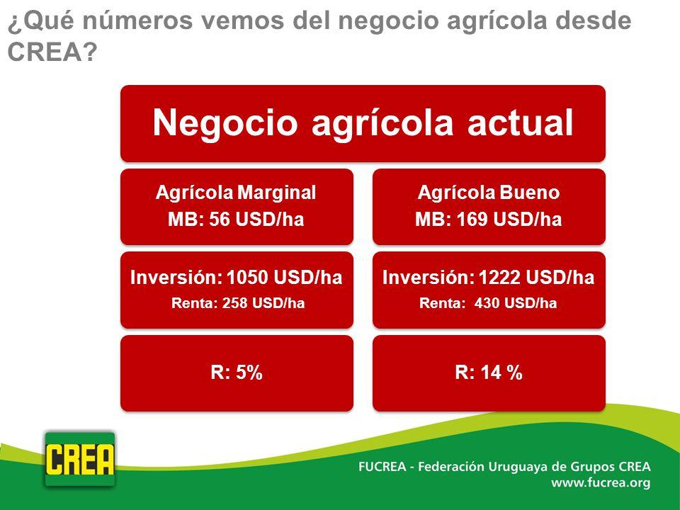¿Qué números vemos del negocio agrícola desde CREA?