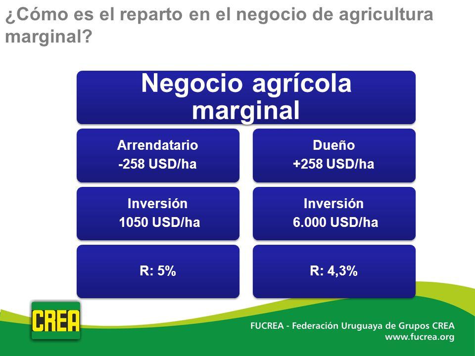 ¿Cómo es el reparto en el negocio de agricultura marginal?