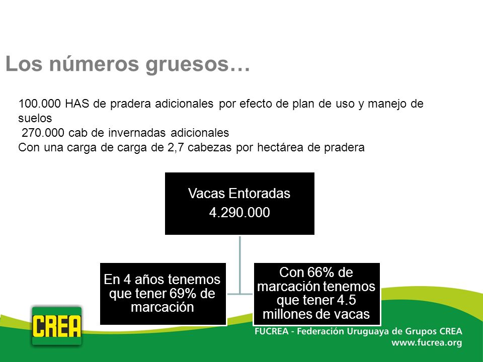 Los números gruesos… 100.000 HAS de pradera adicionales por efecto de plan de uso y manejo de suelos 270.000 cab de invernadas adicionales Con una car