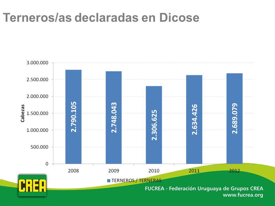 Terneros/as declaradas en Dicose