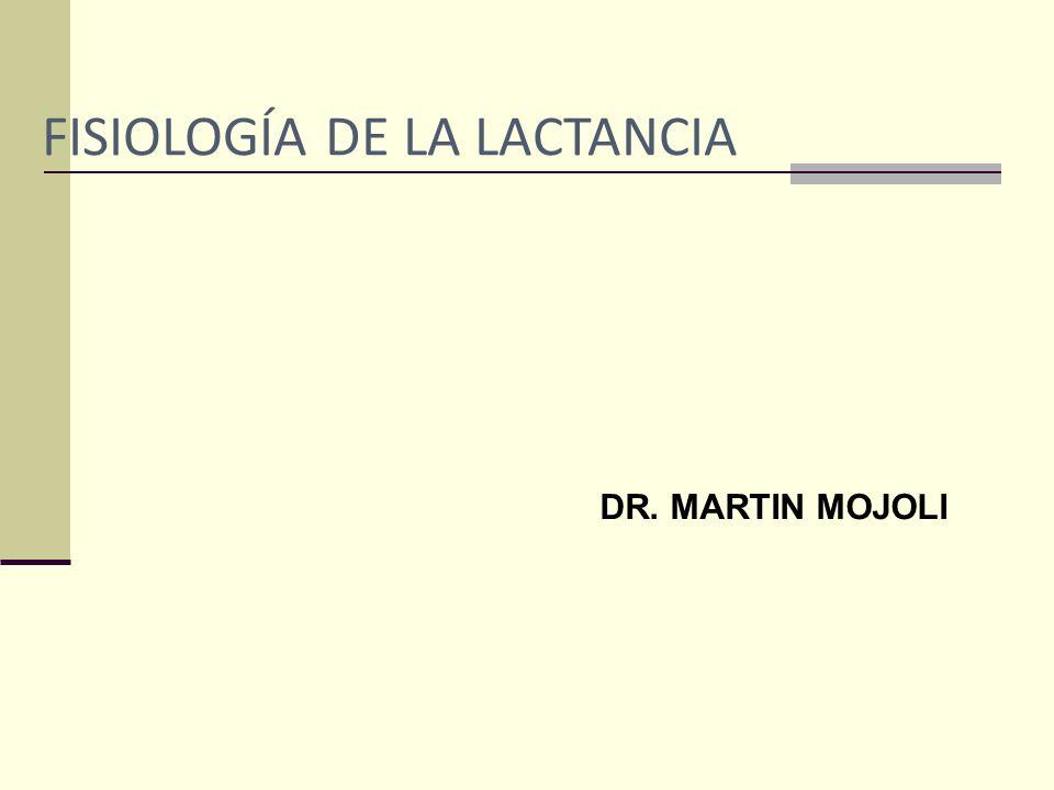 FISIOLOGÍA DE LA LACTANCIA DR. MARTIN MOJOLI