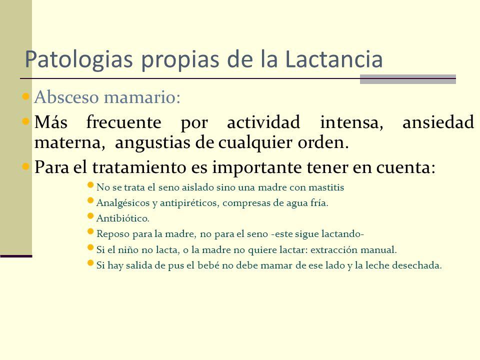 Patologias propias de la Lactancia Absceso mamario: Más frecuente por actividad intensa, ansiedad materna, angustias de cualquier orden. Para el trata
