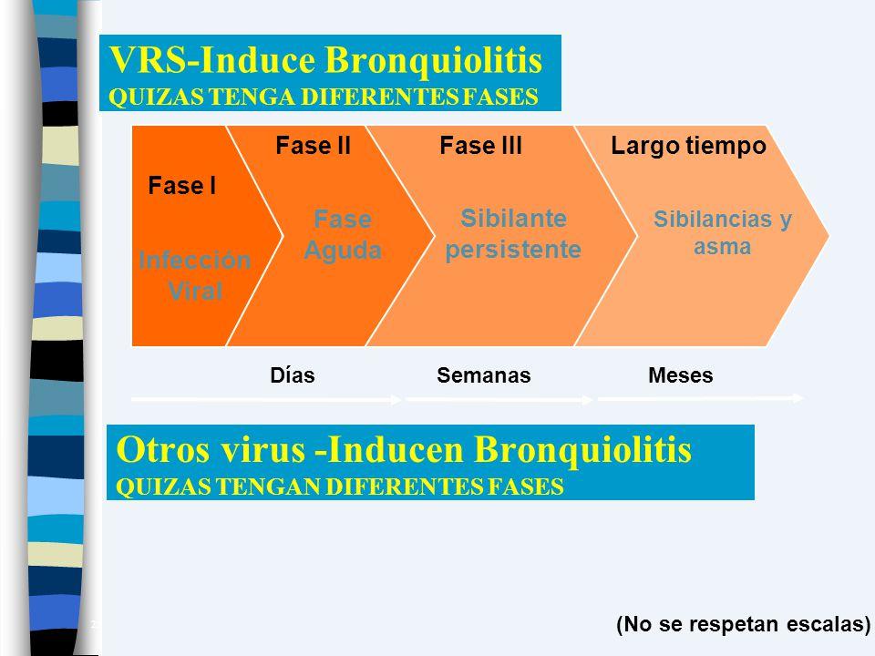 VRS-Induce Bronquiolitis QUIZAS TENGA DIFERENTES FASES Fase I Fase IIFase IIILargo tiempo Infección Viral Fase Aguda Sibilante persistente Sibilancias