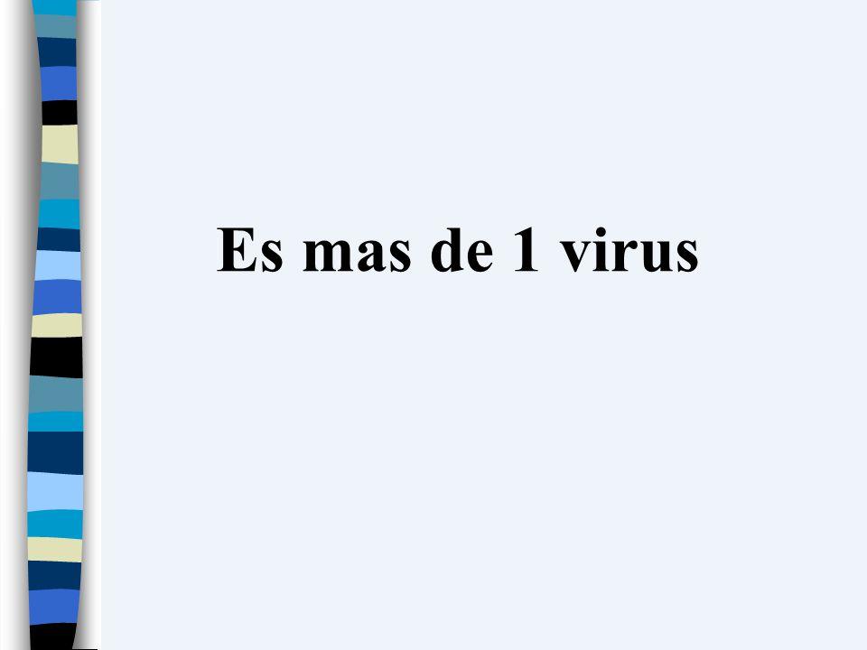 Es mas de 1 virus