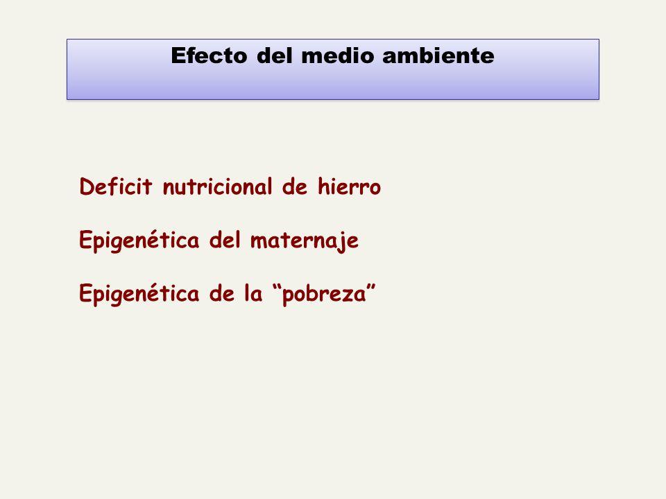 Efecto del medio ambiente Deficit nutricional de hierro Epigenética del maternaje Epigenética de la pobreza