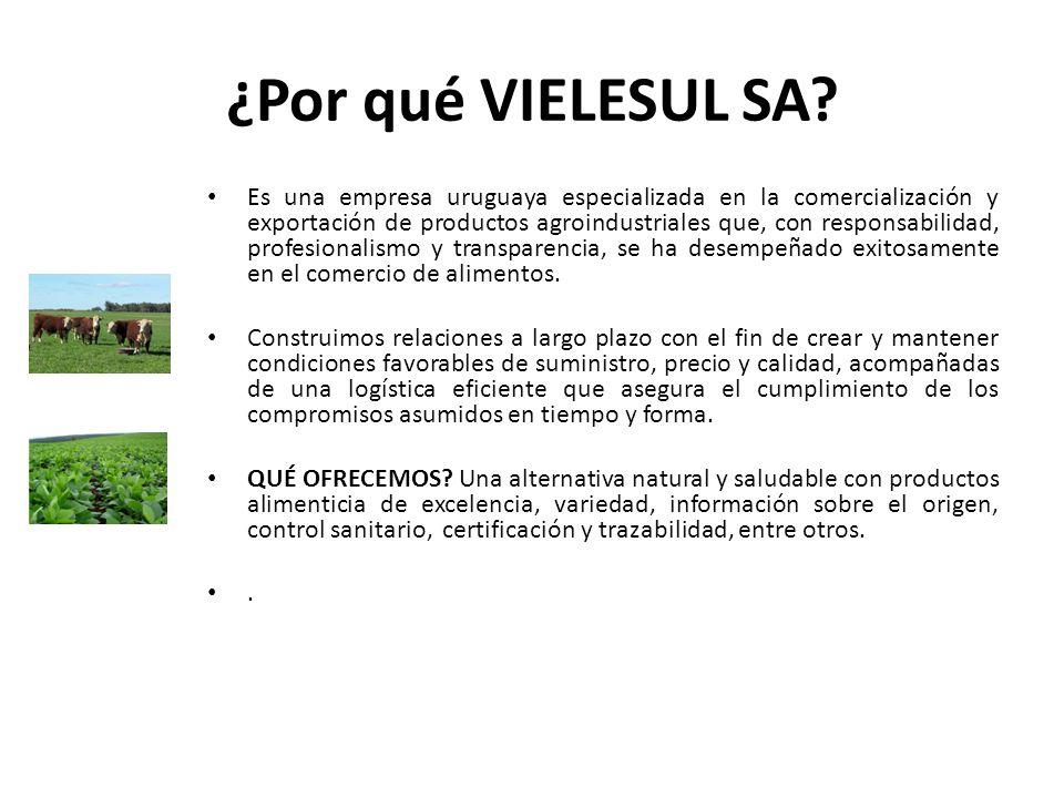 ¿Por qué VIELESUL SA? Es una empresa uruguaya especializada en la comercialización y exportación de productos agroindustriales que, con responsabilida