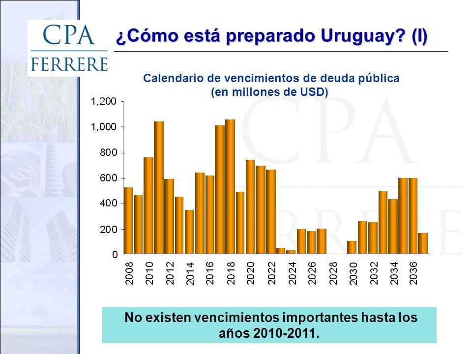 No existen vencimientos importantes hasta los años 2010-2011.