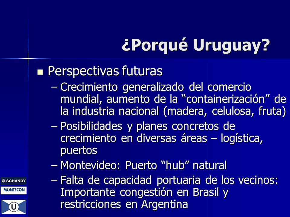 Perspectivas futuras Perspectivas futuras –Crecimiento generalizado del comercio mundial, aumento de la containerización de la industria nacional (mad