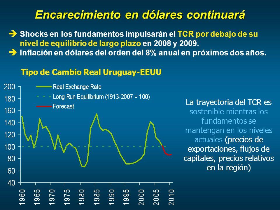 Encarecimiento en dólares continuará Shocks en los fundamentos impulsarán el TCR por debajo de su nivel de equilibrio de largo plazo en 2008 y 2009.