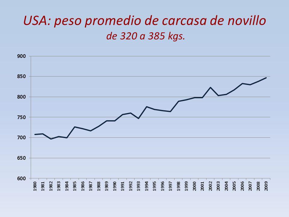 USA: peso promedio de carcasa de novillo de 320 a 385 kgs.