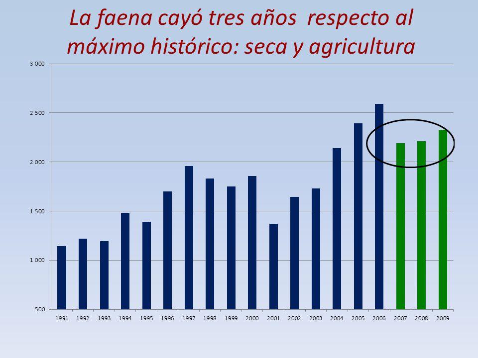La faena cayó tres años respecto al máximo histórico: seca y agricultura