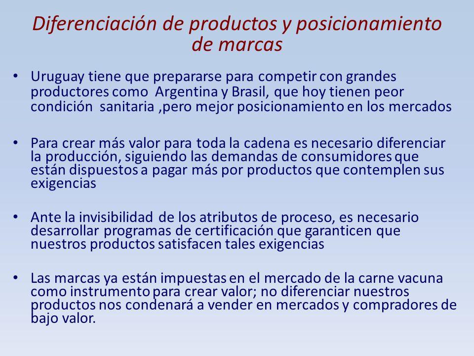 Diferenciación de productos y posicionamiento de marcas Uruguay tiene que prepararse para competir con grandes productores como Argentina y Brasil, qu