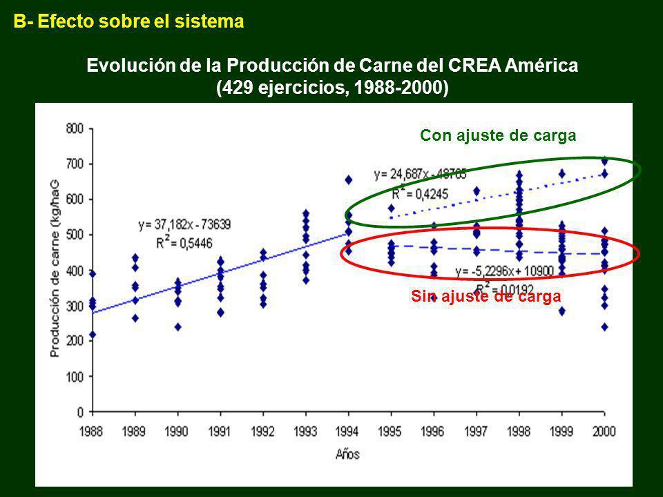 Evolución de la Producción de Carne del CREA América (429 ejercicios, 1988-2000) Con ajuste de carga Sin ajuste de carga B- Efecto sobre el sistema
