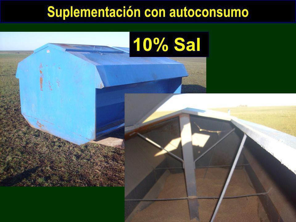 Suplementación con autoconsumo 10% Sal
