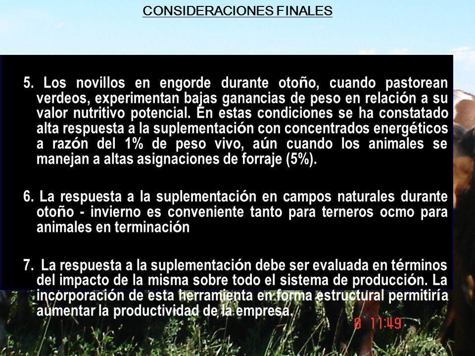 CONSIDERACIONES FINALES 5. Los novillos en engorde durante oto ñ o, cuando pastorean verdeos, experimentan bajas ganancias de peso en relaci ó n a su
