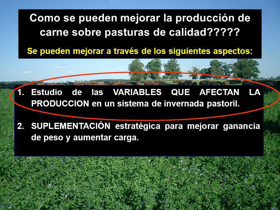 Como se pueden mejorar la producción de carne sobre pasturas de calidad????? Se pueden mejorar a través de los siguientes aspectos: 1.Estudio de las V