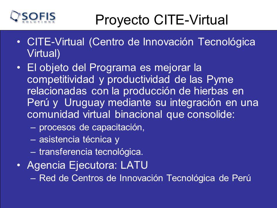 Proyecto CITE-Virtual CITE-Virtual (Centro de Innovación Tecnológica Virtual) El objeto del Programa es mejorar la competitividad y productividad de las Pyme relacionadas con la producción de hierbas en Perú y Uruguay mediante su integración en una comunidad virtual binacional que consolide: –procesos de capacitación, –asistencia técnica y –transferencia tecnológica.