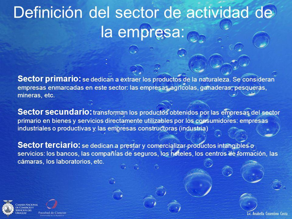 Definición del sector de actividad de la empresa: : Sector primario: se dedican a extraer los productos de la naturaleza. Se consideran empresas enmar