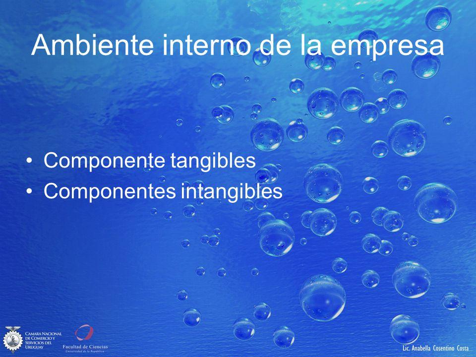 Ambiente interno de la empresa Componente tangibles Componentes intangibles