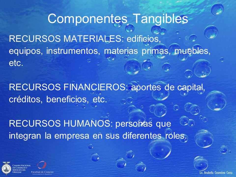 Componentes Tangibles RECURSOS MATERIALES: edificios, equipos, instrumentos, materias primas, muebles, etc. RECURSOS FINANCIEROS: aportes de capital,
