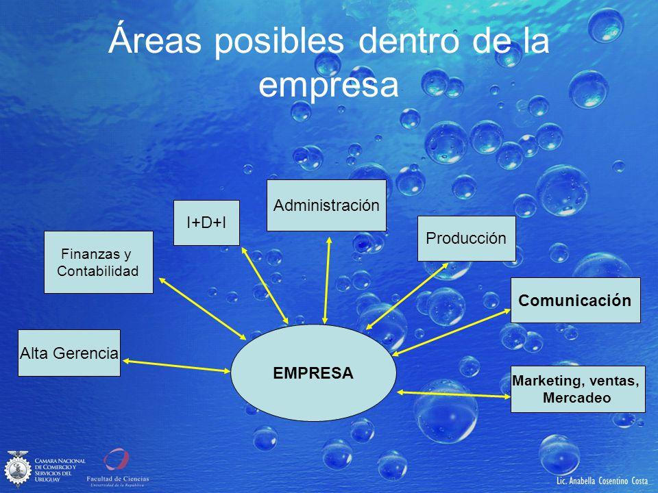 Áreas posibles dentro de la empresa EMPRESA Alta Gerencia Finanzas y Contabilidad I+D+I Administración Producción Marketing, ventas, Mercadeo Comunica
