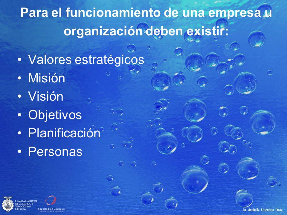 Para el funcionamiento de una empresa u organización deben existir: Valores estratégicos Misión Visión Objetivos Planificación Personas