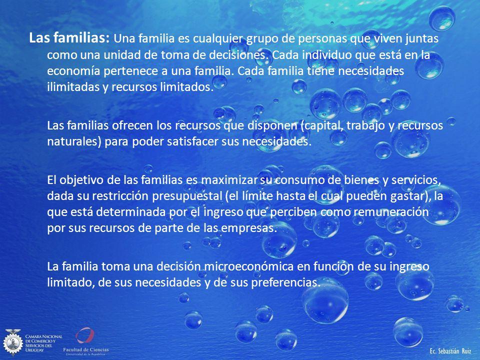 Las familias: Una familia es cualquier grupo de personas que viven juntas como una unidad de toma de decisiones. Cada individuo que está en la economí