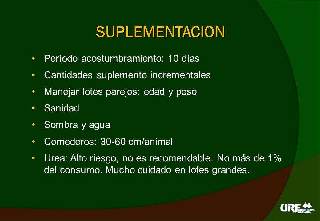 SUPLEMENTOS CATEGORIAS CANTIDAD DIARIA/ANIMAL RACION 21%Terneros 45 – 80 kg1 – 1.5 kg RACION 18%Terneros 80 – 120 kg1 – 2 kg RACION 14%Recría 120 – 200 kg2 – 3.5 kg RACION 12%Adultos + 200 kg2 – 4 kg COMP.