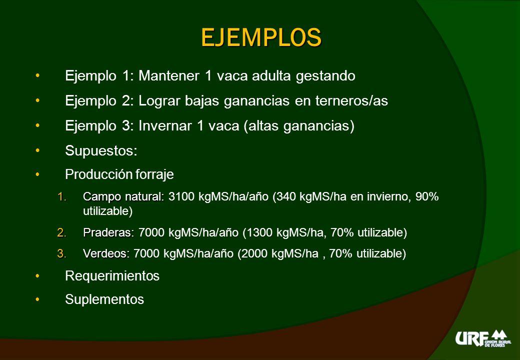EJEMPLO 1: vacas cría CARGA (anim/ha) Suplementos/a nim.