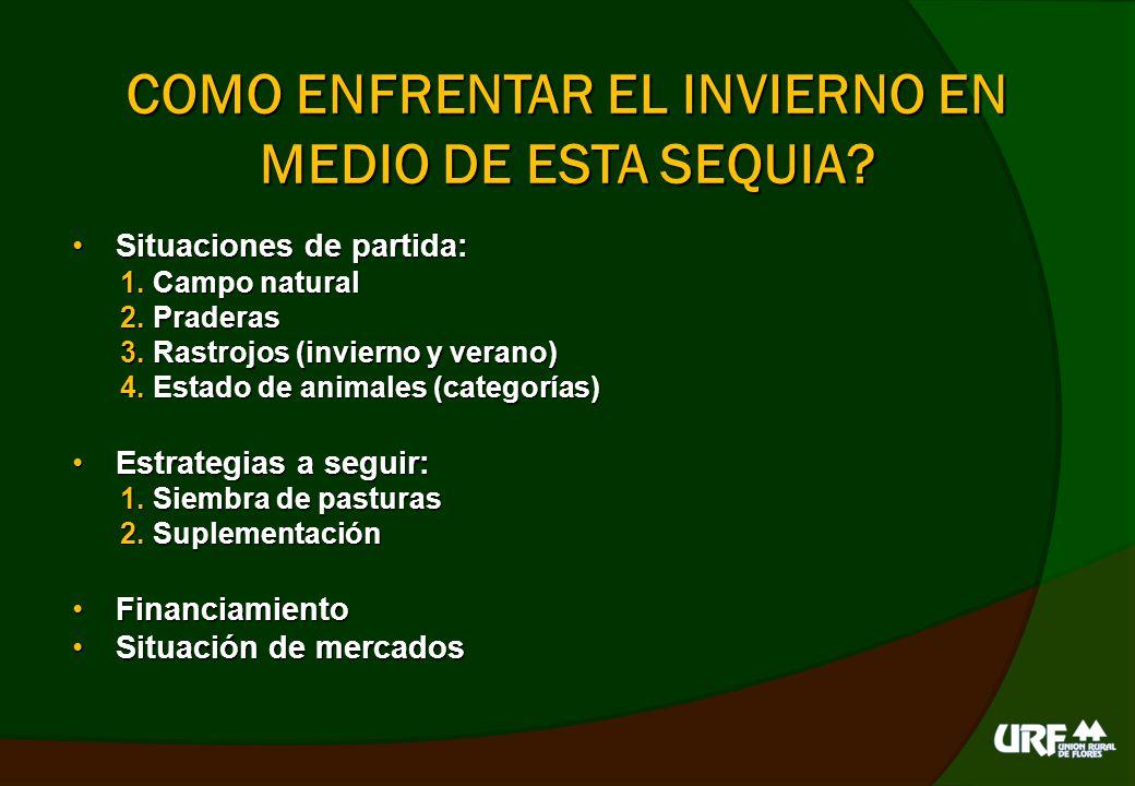 SITUACIONES DE PARTIDA Campo natural: Campo natural: muy baja disponibilidad, degradadoPraderas Población de plantas Banco de semillas.