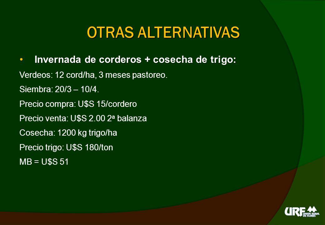 COMO REARMAR EL STOCK Recría vaquillonasRecría vaquillonas Pastoreo 2 horas/día verdeo, carga 5 - 8 vaq/ha.