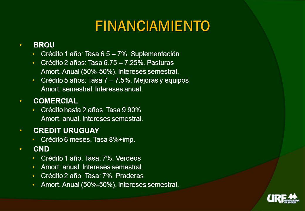 FINANCIAMIENTO Balances BPS DGI DICOSE Flujo de fondos Informe agronómico
