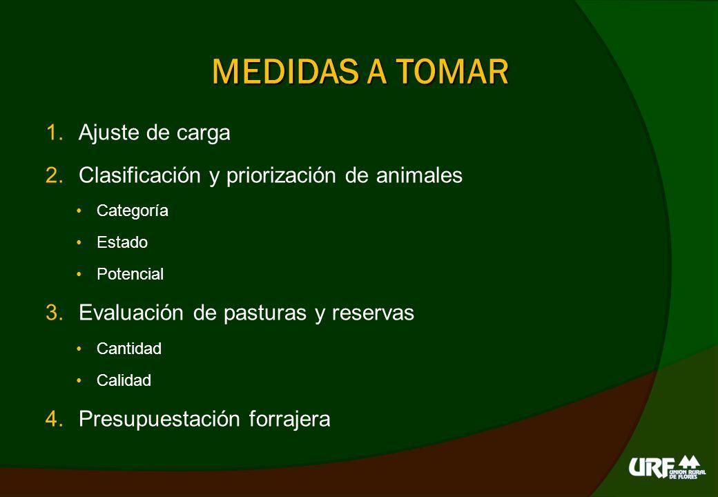 MEDIDAS A TOMAR 5.Manejo del pastoreo Número de parcelas (utilización) Días de descanso (15 d vs.
