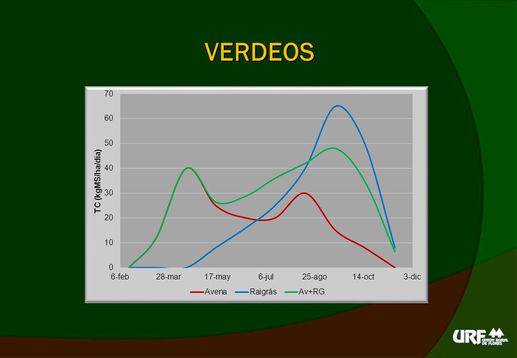 COSTOS DE PASTURAS Semilla 100 kg fertilizante (12-52) Pulverización (4 l glifosato) y SD 80 kg urea (en verdeos) Herbicida selectivo