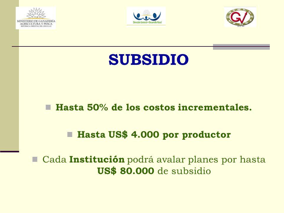 SUBSIDIO Hasta 50% de los costos incrementales. Hasta US$ 4.000 por productor Cada Institución podrá avalar planes por hasta US$ 80.000 de subsidio