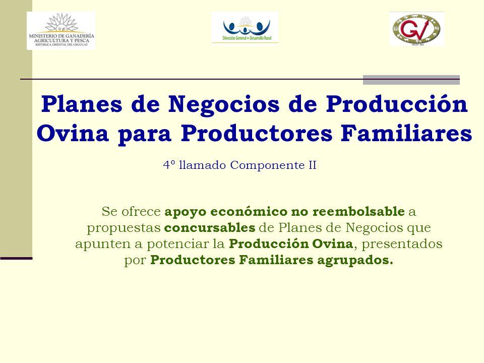 Planes de Negocios de Producción Ovina para Productores Familiares 4º llamado Componente II Se ofrece apoyo económico no reembolsable a propuestas con