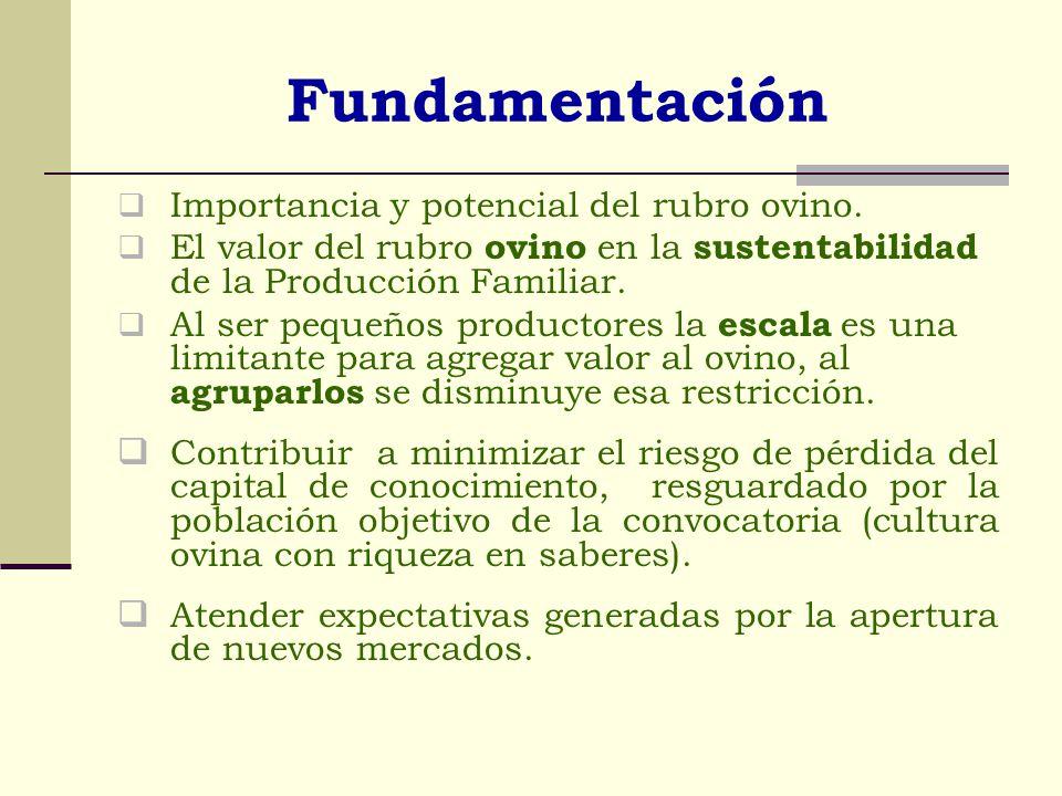 Características de las propuestas Potenciar la producción ovina: a través de incorporación del rubro ovino, innovación tecnológica, innovación organizativa y/o fortalecimiento institucional, innovación en productos y/o mercados.