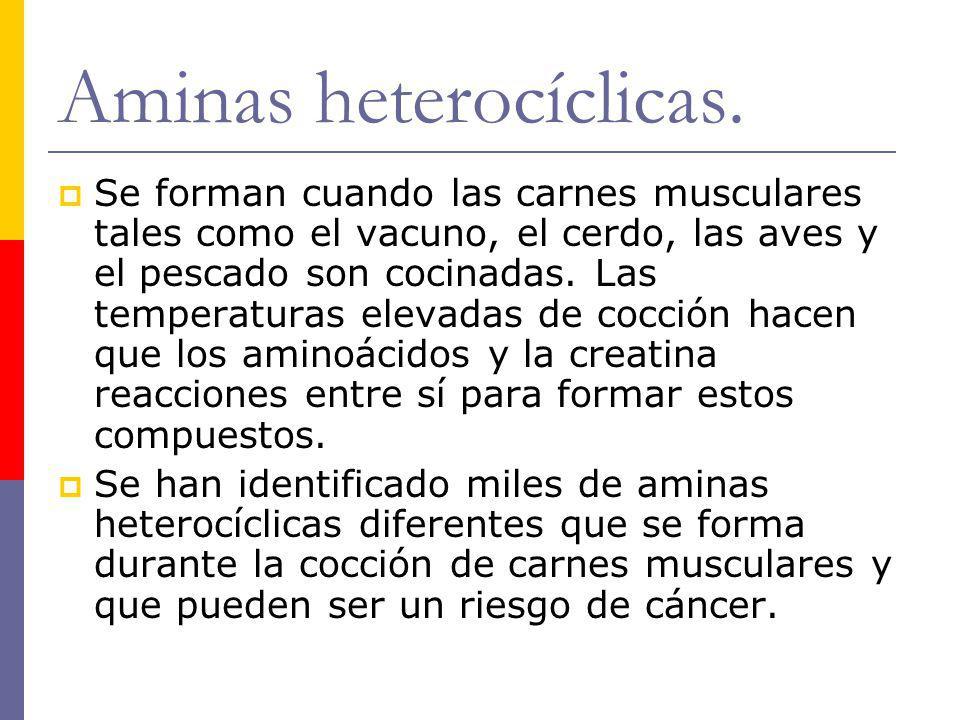 Aminas heterocíclicas. Se forman cuando las carnes musculares tales como el vacuno, el cerdo, las aves y el pescado son cocinadas. Las temperaturas el