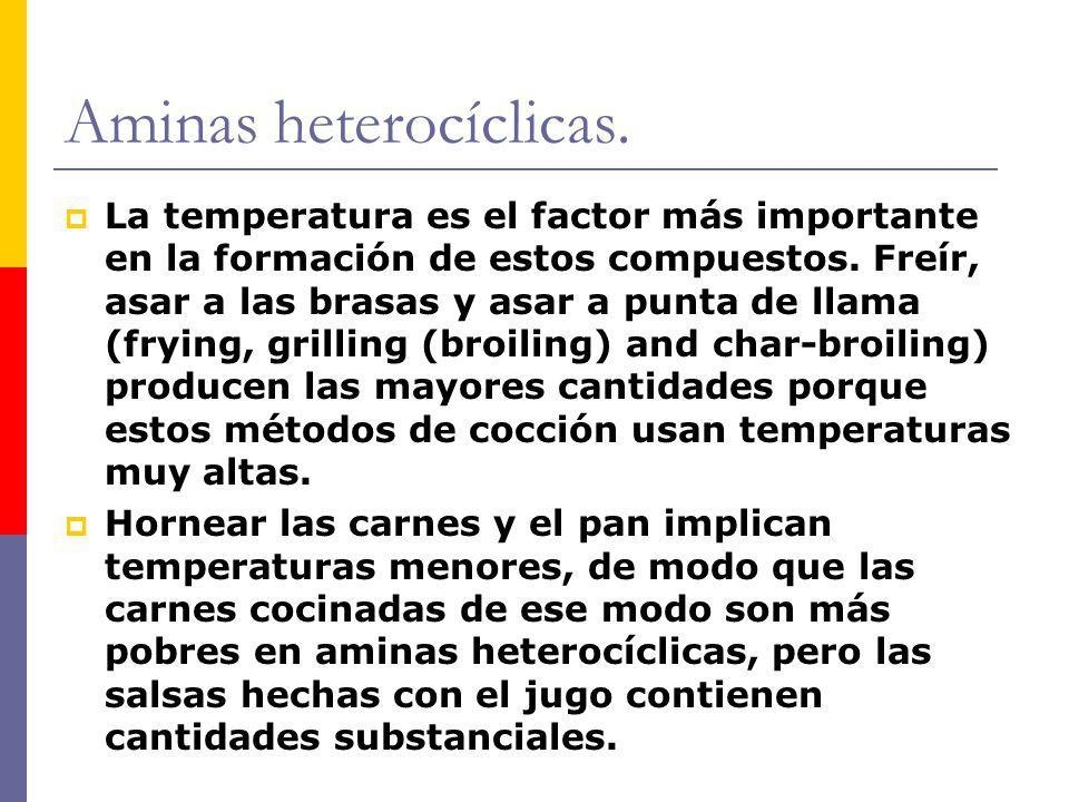 Aminas heterocíclicas. La temperatura es el factor más importante en la formación de estos compuestos. Freír, asar a las brasas y asar a punta de llam