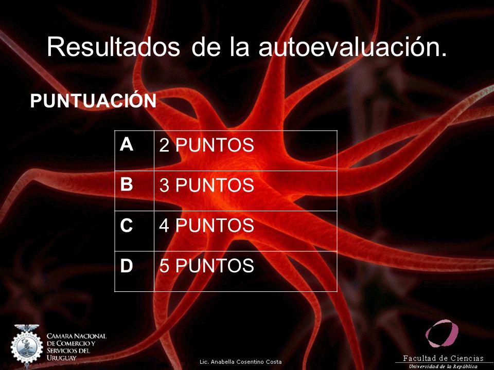 Resultados de la autoevaluación. PUNTUACIÓN A2 PUNTOS B3 PUNTOS C4 PUNTOS D5 PUNTOS