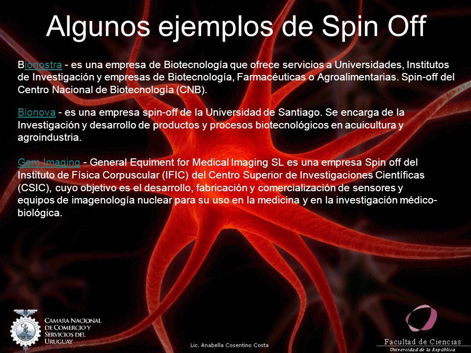 Algunos ejemplos de Spin Off Bionostra - es una empresa de Biotecnología que ofrece servicios a Universidades, Institutosionostra de Investigación y empresas de Biotecnología, Farmacéuticas o Agroalimentarias.