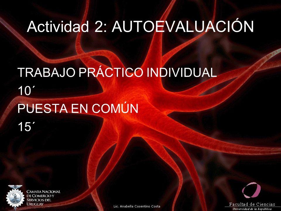 Actividad 2: AUTOEVALUACIÓN TRABAJO PRÁCTICO INDIVIDUAL 10´ PUESTA EN COMÚN 15´