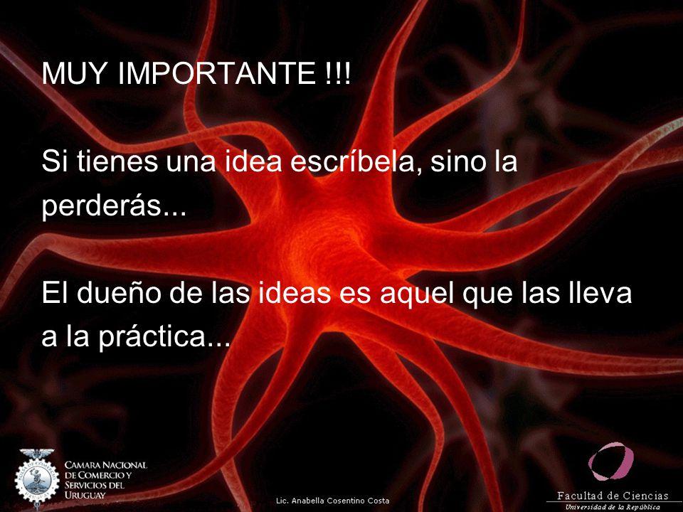 MUY IMPORTANTE !!! Si tienes una idea escríbela, sino la perderás... El dueño de las ideas es aquel que las lleva a la práctica...