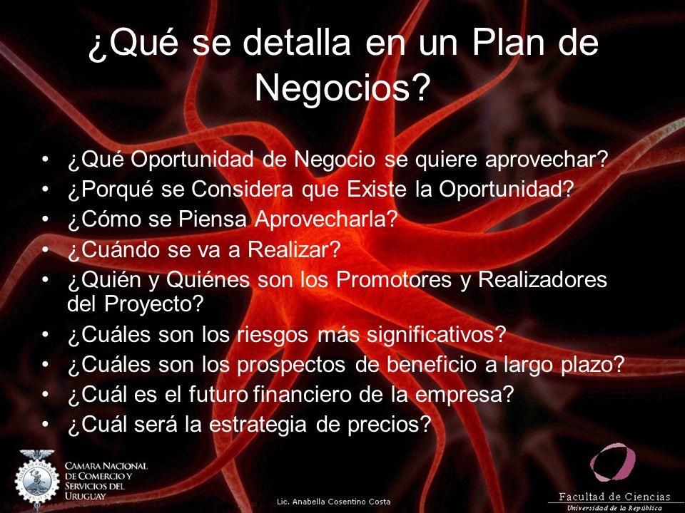¿Qué se detalla en un Plan de Negocios? ¿Qué Oportunidad de Negocio se quiere aprovechar? ¿Porqué se Considera que Existe la Oportunidad? ¿Cómo se Pie