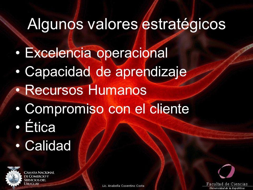 Algunos valores estratégicos Excelencia operacional Capacidad de aprendizaje Recursos Humanos Compromiso con el cliente Ética Calidad