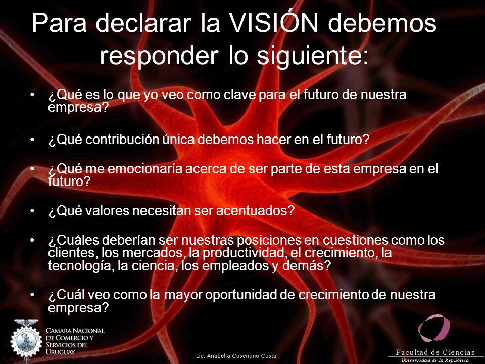 Para declarar la VISIÓN debemos responder lo siguiente: ¿Qué es lo que yo veo como clave para el futuro de nuestra empresa? ¿Qué contribución única de